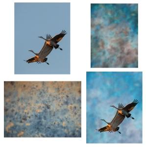 2 cranes - 2 textures