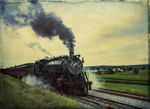 2d-steamer-wild-horse-tour