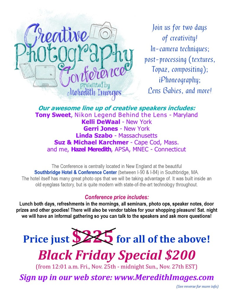 conference-flier-black-friday-1