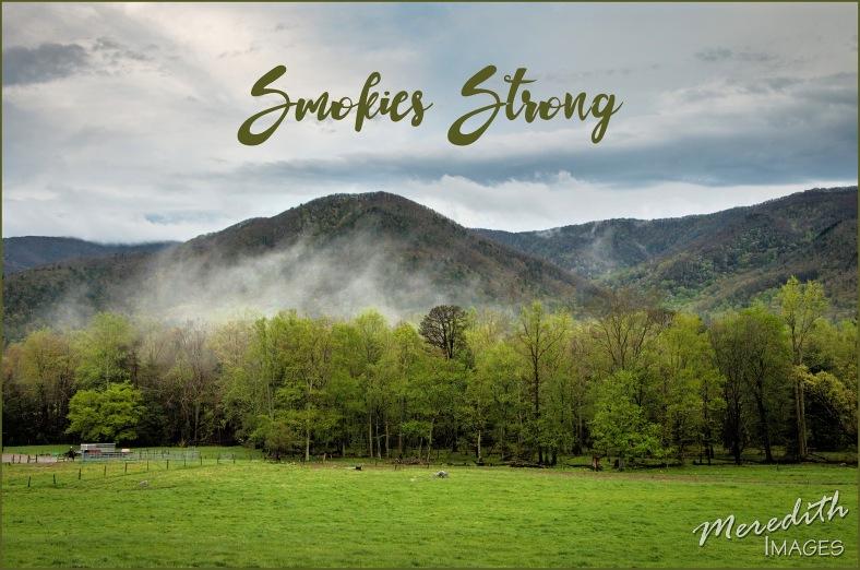 smokies-strong