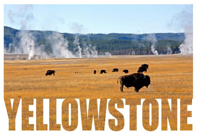 3b-yellowstone-final