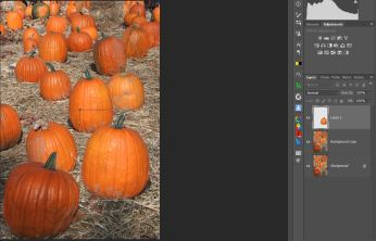 Using Move Tool to move and resize new pumpkin.