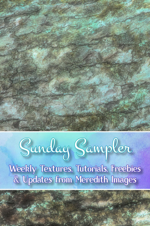 March 10 – Sunday Sampler