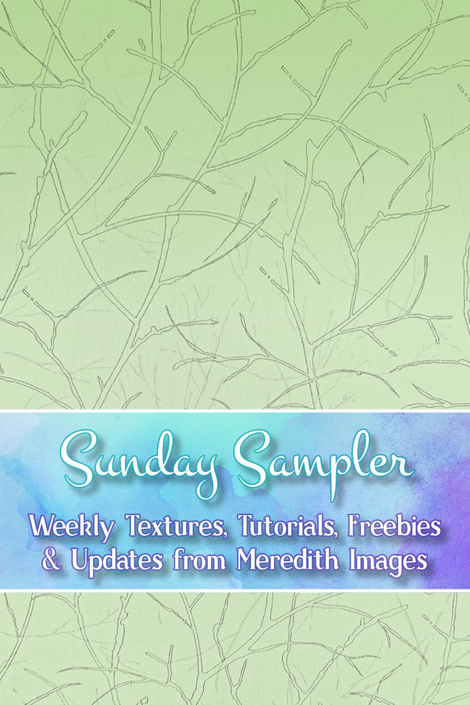 Sunday Sampler July 21