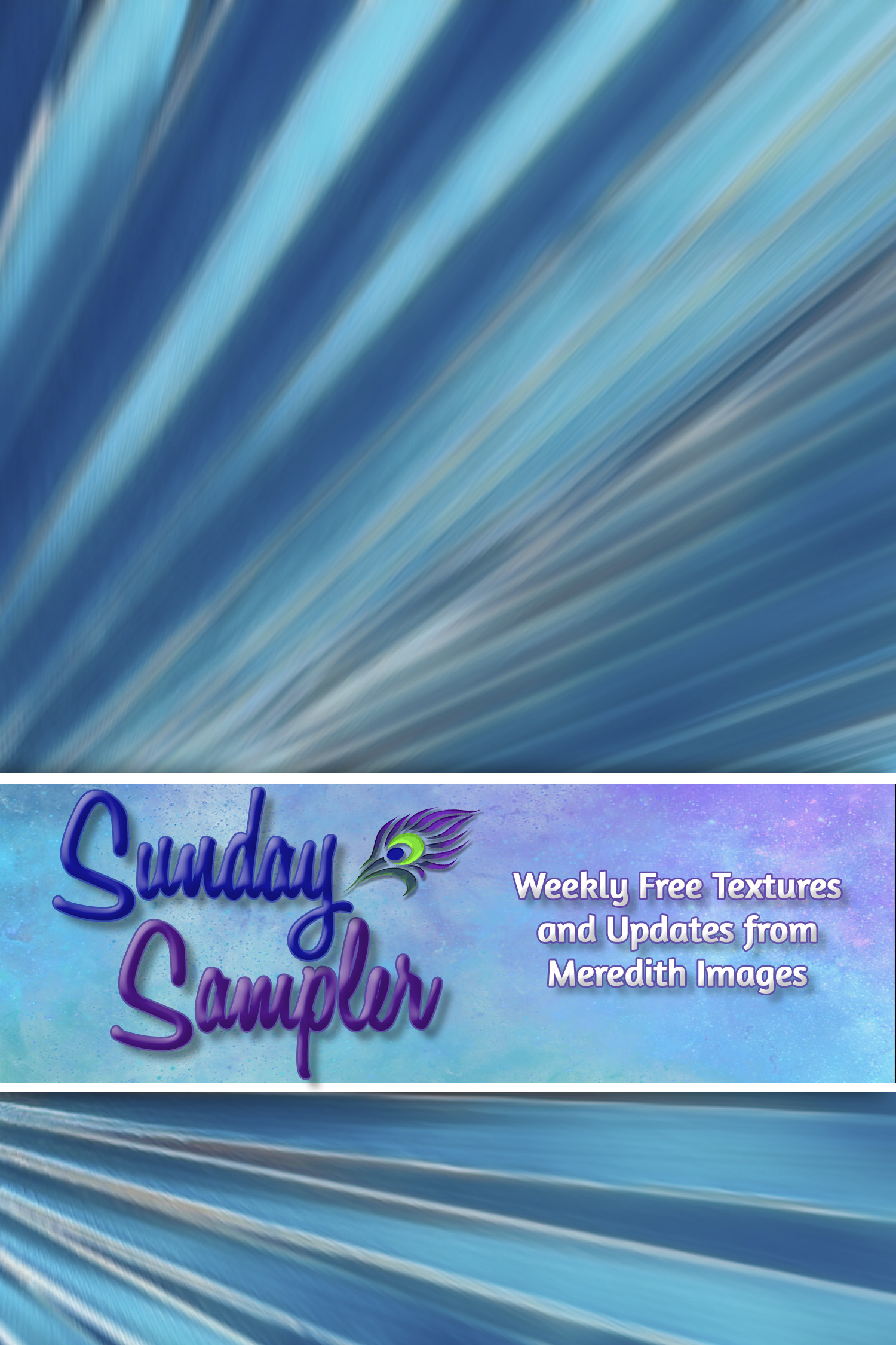 Sunday Sampler March 7