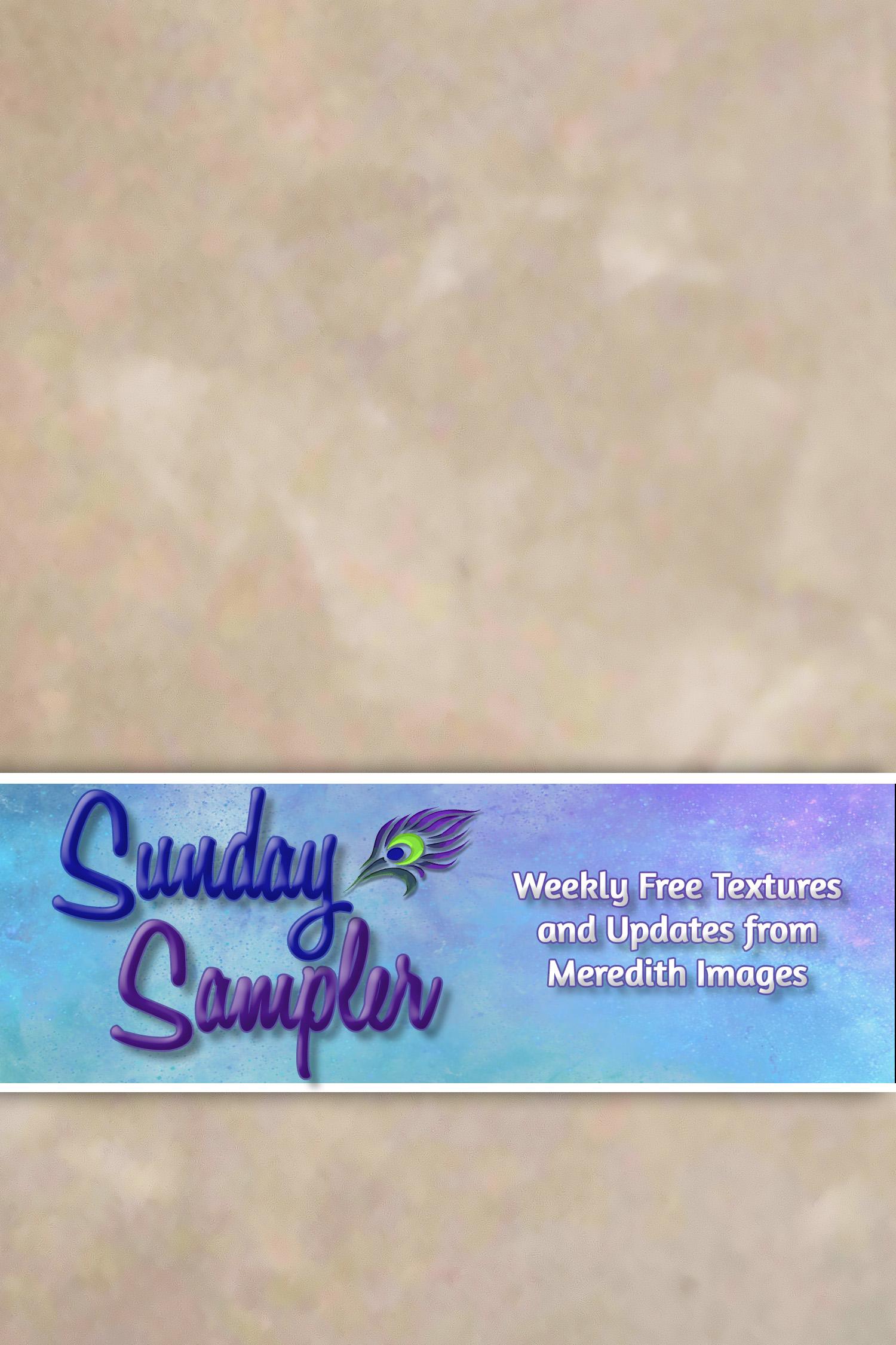 Sunday Sampler June 13