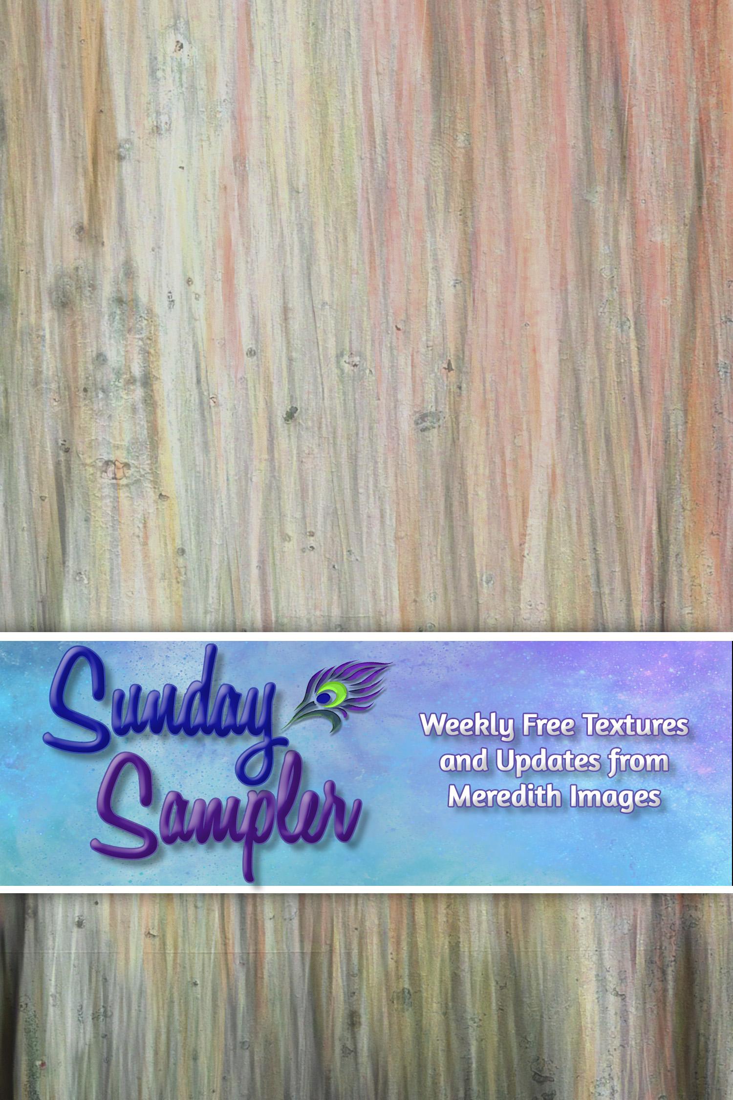 Sunday Sampler October 24
